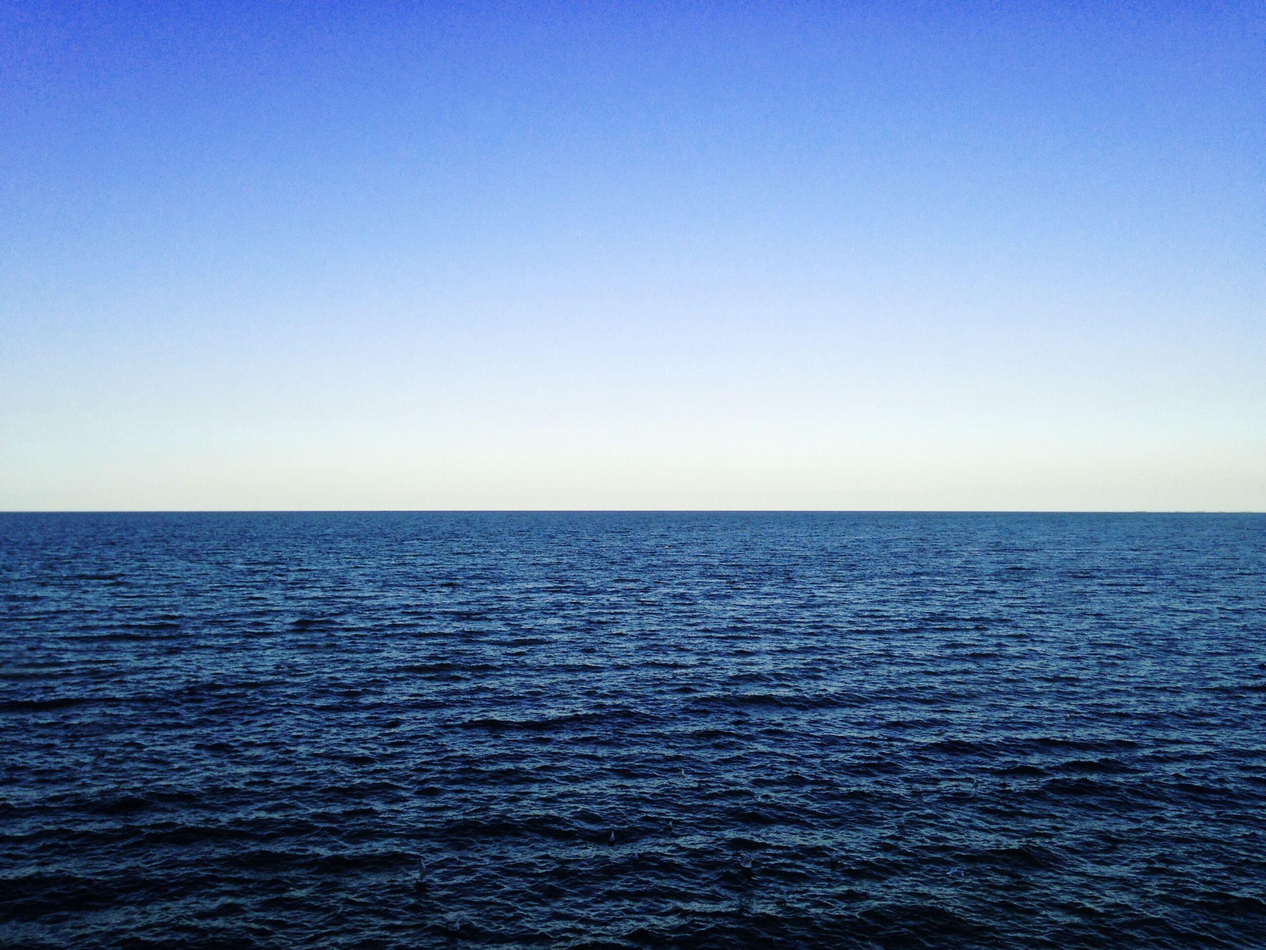 The Sea Cast